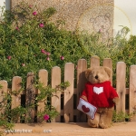 Teddy Bear (Be my Valentine.) ขนาด 21 ซม.