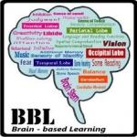 หลักสูตรการเรียนการสอนสำหรับเด็กปฐมวัยตามแนวทาง BBL