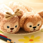 SALE SALE SALE น่ารักปุกปุย Disney Duffy Bear plush pencil case