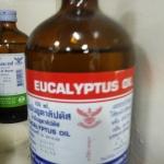 นํ้ามันยูคาลิปตัส (Eucalyptus Oil)