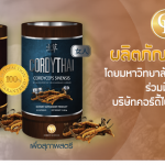 ถั่งเช่า ม.เกษตรศาสตร์ cordythai คอร์ดี้ไทย