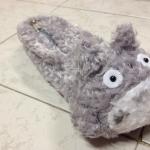 กระเป๋าดินสอ Totoro โตโตโร่