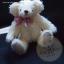 ตุ๊กตาหมีผ้าขนสีครีมขนาด 22 cm. - Ivy thumbnail 2