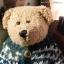 หมีขนสั้นสีน้ำตาล ขนาด 22 ซม. thumbnail 2