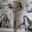The Wild Cat Angel โจรสาวเจ้าเสน่ห์ เล่มเดียวจบ นากะ โทโมโกะ เขียน thumbnail 4