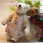 ตุ๊กตาหมีผ้าขนสีครีม ขนาด 7.5 cm. - Getty thumbnail 5