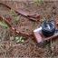 เคสกล้อง FUji XE1 XE2 thumbnail 3