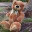 หมีนุ่มนิ่มสีน้ำตาล สูง 27 ซม. thumbnail 3