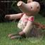 ตุ๊กตาหมู ขนาด 21 cm. - Piggory thumbnail 5