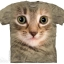 เสื้อยืด3Dสุดแนว(KITTEN FACE T-SHIRT) thumbnail 1
