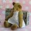 ตุ๊กตาหมีผ้าขนสั้นสีน้ำตาลขนาด 13 cm. - Cracker Girl thumbnail 4