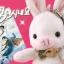พร้อมส่งค่ะ ที่ห้อยมือถือน้องหมู Piggy Bunny จากซีรี่ส์เกาหลี thumbnail 1