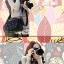 กระเป๋ากล้องแฟชั่นเกาหลี SLR DSLR Mirrorless thumbnail 13
