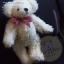 ตุ๊กตาหมีผ้าขนสีครีมขนาด 22 cm. - Ivy thumbnail 5