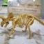 ชุดขุดฟอสซิลโมเดลไดโนเสาร์ 2ตัว(ประกอบได้) thumbnail 6