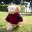 หมีสีครีมใส่เสว๊ตเตอร์ ขนาด 21 ซม. thumbnail 2