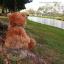 หมีนุ่มนิ่มสีน้ำตาล สูง 27 ซม. thumbnail 6