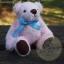 ตุ๊กตาหมีผ้าขนสีชมพูขนาด 12 cm. - Bess thumbnail 4