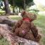 หมีเท็ดดี้สีน้ำตาลเข้ม สูง 31 ซม. thumbnail 6