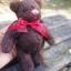 ตุ๊กตาหมีขนสีน้ำตาลเข้มขนาด 16 ซม. - DoBear thumbnail 1