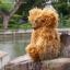 ตุ๊กตาหมีผ้าขนหยิกขนาด 25 cm. - Bagel thumbnail 7