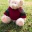 หมีสีครีมใส่เสว๊ตเตอร์ ขนาด 21 ซม. thumbnail 1