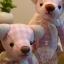 ตุ๊กตาหมีผ้าฝ้ายสีชมพู ขนาด 14 cm. - Herbie thumbnail 1