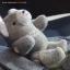 ตุ๊กตาหมีผ้านิ่มสีเทาขนาด 16.5 cm. - Winter thumbnail 2