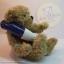 หมีเท็ดดี้เล่นน้ำ ขนาด 20 ซม. thumbnail 2