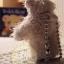 ตุ๊กตาหมีผ้าขนสีครีมขนาด 5 cm. - BB bear thumbnail 4