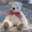 ตุ๊กตาหมีผ้าขนหนูสีครีมขนาด 10 cm. - Muffin thumbnail 5