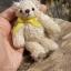 ตุ๊กตาหมีผ้าขนสีครีมขนาด 10 cm. - Muffin thumbnail 6
