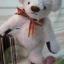 ตุ๊กตาหมีผ้าขนยุ่งสีขาวขนาด 20 cm. - Friday thumbnail 2