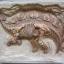 ชุดขุดฟอสซิลไดโนเสาร์(แบบแผ่นฟอสซิลตั้งโชว์) thumbnail 2
