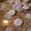 กระดุมขนาดเส้นผ่านศูนย์กลาง 10 mm. - white thumbnail 2
