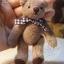ตุ๊กตาหมีผ้าขนหนูสีน้ำตาลขนาด 10 cm. - Muffin thumbnail 5