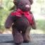 ตุ๊กตาหมีขนสีน้ำตาลเข้มขนาด 16 ซม. - DoBear thumbnail 4