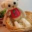 ตุ๊กตาหมีถักขนาด 18 cm. - PiPo (white) thumbnail 1