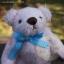 ตุ๊กตาหมีผ้าขนสีชมพูขนาด 12 cm. - Bess thumbnail 2