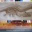 ชุดขุดฟอสซิลไดโนเสาร์ซีรี่วัน(แบบแผ่นฟอสซิลตั้งโชว์) thumbnail 1