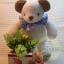 ตุ๊กตาหมีผ้าขนหนูขนาด 18 cm. - Niza Baby Boy thumbnail 6