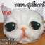 SALE หมอนซุกมือแมว 02 thumbnail 1