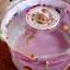 สีชมพู Little Swimmer Set ลายหนูน้อยนักบัลเล่ย์ สระว่ายน้ำทรงสูง ปลอดสารพิษ ขนาด 80x80cm ชุดประกอบสระครบ Set แถมห่วงยางสวมคอ ที่สูบลม กาวซ่อม thumbnail 7