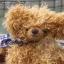 ตุ๊กตาหมีผ้าขนหยิกขนาด 25 cm. - Bagel thumbnail 3