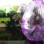 ไข่เไดโนเสาร์พลาสติกขนาดใหญ่ thumbnail 1