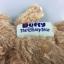 น่ารักมากๆ พวงกุญแจตุ๊กตา The duffy bear by Tokyo Disney Sea thumbnail 5