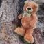 หมีนุ่มนิ่มสีน้ำตาล สูง 27 ซม. thumbnail 4