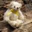 ตุ๊กตาหมีผ้าขนสีครีมขนาด 10 cm. - Muffin thumbnail 2