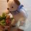 ตุ๊กตาหมีผ้าขนหนูขนาด 18 cm. - Niza Baby Boy thumbnail 4