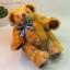 ตุ๊กตาหมีผ้าขนฟูขนาด 22 cm. - Durum thumbnail 4